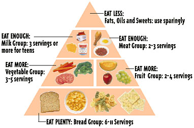 Food guide pyramid there are six food groups in the pyramid breads cereal rice pasta vegetables fruits milk yogurt cheese meat poultry fish eggs beans and nuts forumfinder Gallery